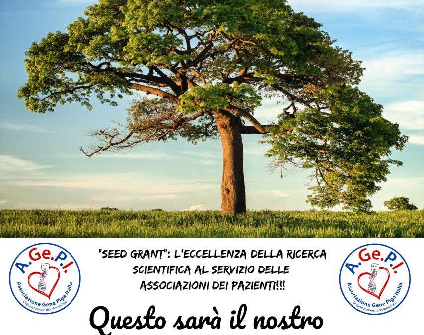 Progetto Seed Grant